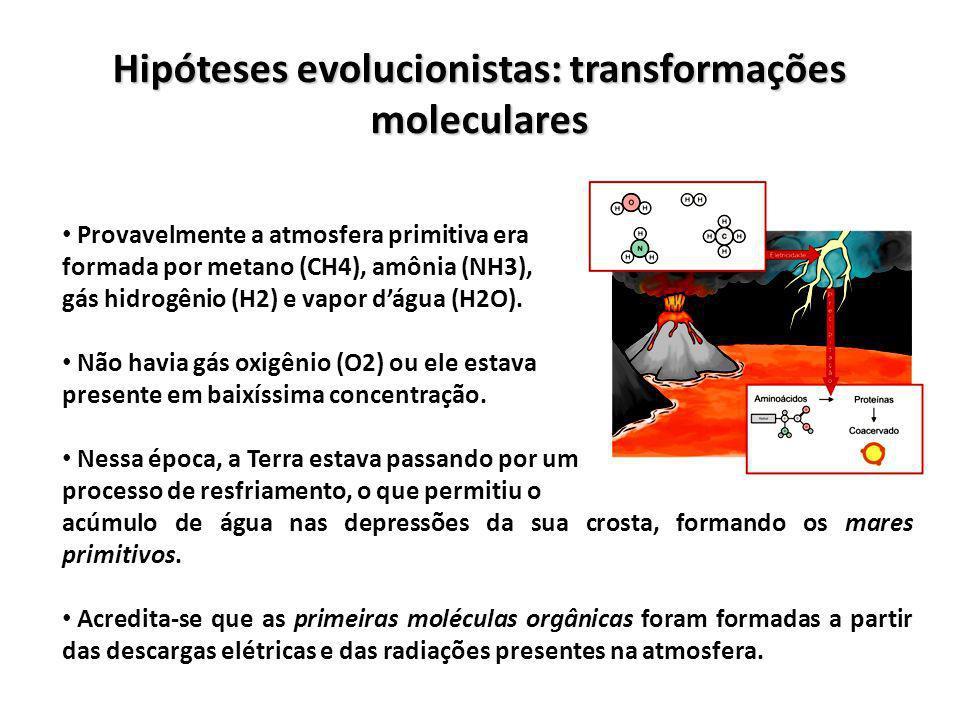 Hipóteses evolucionistas: transformações moleculares Provavelmente a atmosfera primitiva era formada por metano (CH4), amônia (NH3), gás hidrogênio (H