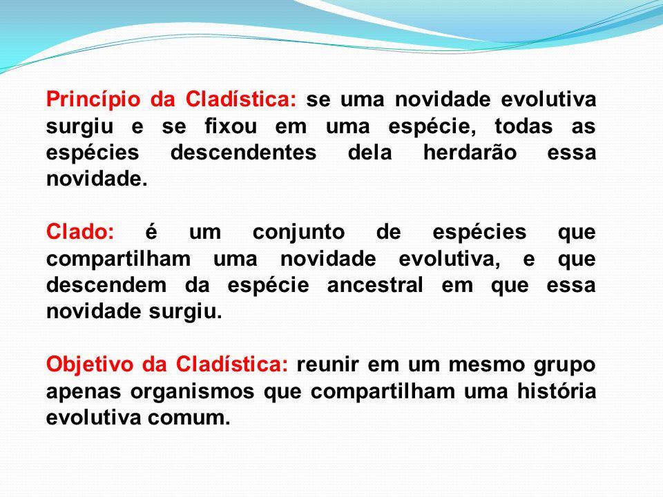 Princípio da Cladística: se uma novidade evolutiva surgiu e se fixou em uma espécie, todas as espécies descendentes dela herdarão essa novidade. Clado