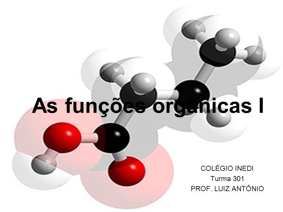 As funções orgânicas I COLÉGIO INEDI Turma 301 PROF. LUIZ ANTÔNIO