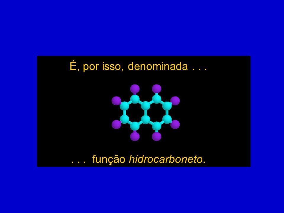 É, por isso, denominada...... função hidrocarboneto.