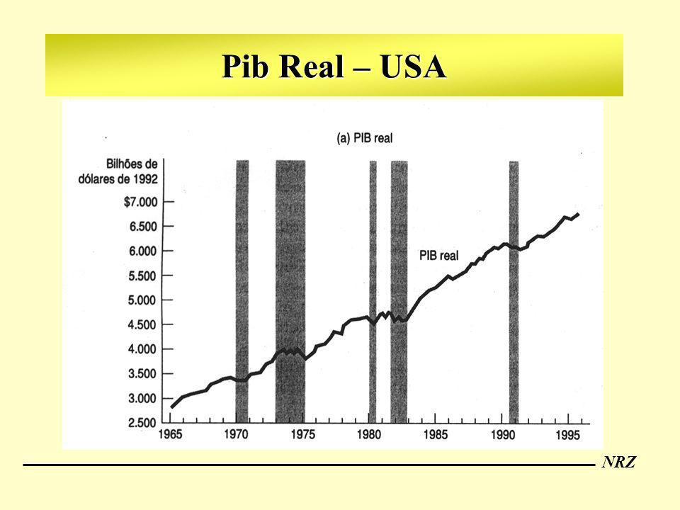 NRZ Pib Real – USA