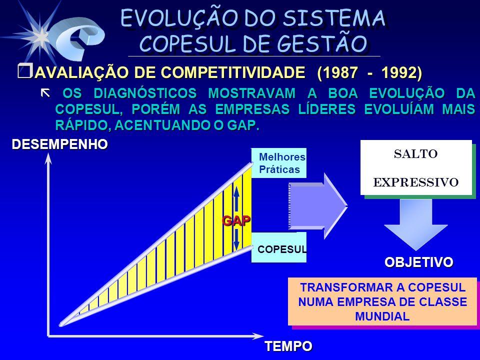EVOLUÇÃO DO SISTEMA COPESUL DE GESTÃO AVALIAÇÃO DE COMPETITIVIDADE (1987 - 1992) AVALIAÇÃO DE COMPETITIVIDADE (1987 - 1992) OS DIAGNÓSTICOS MOSTRAVAM
