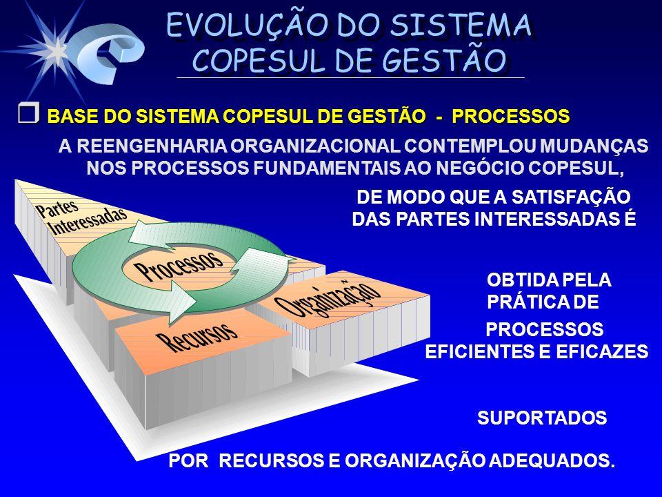 EVOLUÇÃO DO SISTEMA COPESUL DE GESTÃO BASE DO SISTEMA COPESUL DE GESTÃO - PROCESSOS BASE DO SISTEMA COPESUL DE GESTÃO - PROCESSOS A REENGENHARIA ORGAN