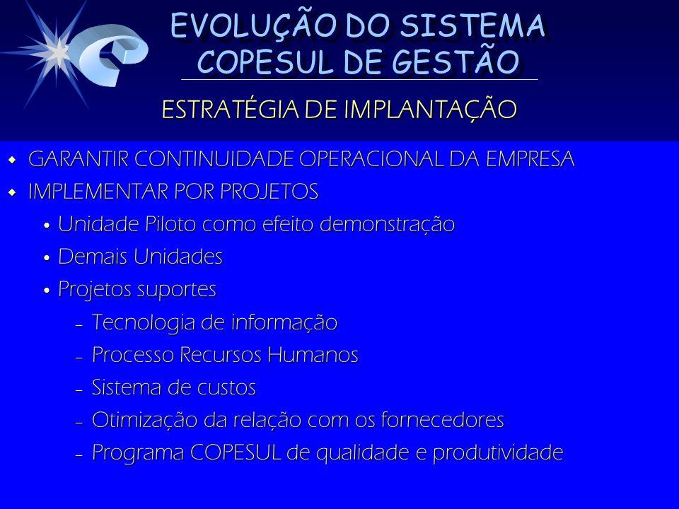 EVOLUÇÃO DO SISTEMA COPESUL DE GESTÃO ESTRATÉGIA DE IMPLANTAÇÃO GARANTIR CONTINUIDADE OPERACIONAL DA EMPRESA GARANTIR CONTINUIDADE OPERACIONAL DA EMPR