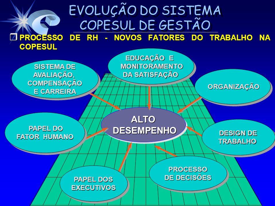 EVOLUÇÃO DO SISTEMA COPESUL DE GESTÃO r PROCESSO DE RH - NOVOS FATORES DO TRABALHO NA COPESUL ALTO DESEMPENHO DESEMPENHOALTO ORGANIZAÇÃO ORGANIZAÇÃO P