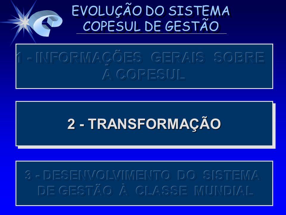EVOLUÇÃO DO SISTEMA COPESUL DE GESTÃO AVALIAÇÃO DE COMPETITIVIDADE (1987 - 1992) AVALIAÇÃO DE COMPETITIVIDADE (1987 - 1992) OS DIAGNÓSTICOS MOSTRAVAM A BOA EVOLUÇÃO DA COPESUL, PORÉM AS EMPRESAS LÍDERES EVOLUÍAM MAIS RÁPIDO, ACENTUANDO O GAP.