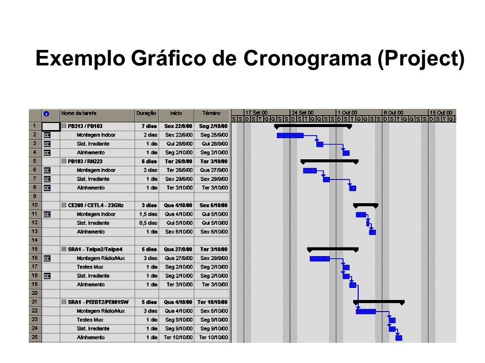 Exemplo Gráfico de Cronograma (Project)