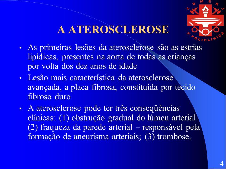 A ATEROSCLEROSE As primeiras lesões da aterosclerose são as estrias lipídicas, presentes na aorta de todas as crianças por volta dos dez anos de idade