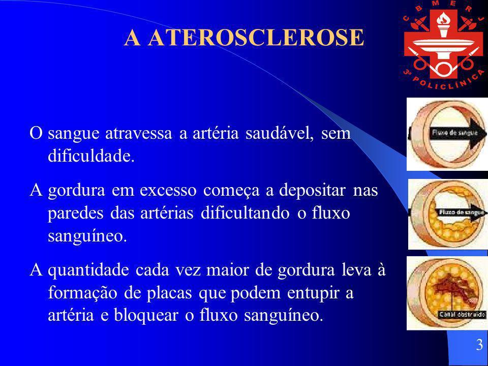 Estria gordurosaPlaca de ateroma Aneurismas Trombose da placa Obstrução gradual do lúmen.
