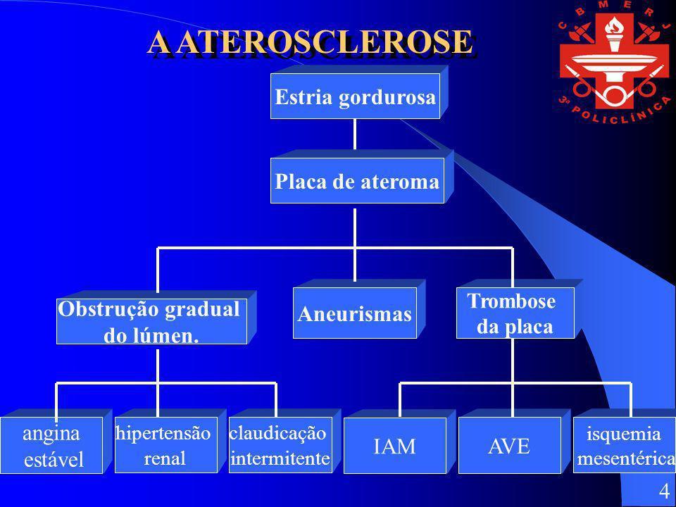 Estria gordurosaPlaca de ateroma Aneurismas Trombose da placa Obstrução gradual do lúmen. claudicação intermitente hipertensão renal angina estável AV