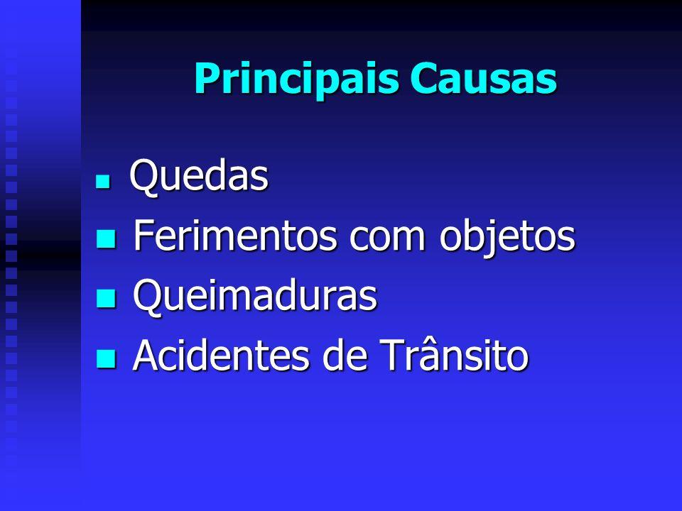 Principais Causas Quedas Quedas Ferimentos com objetos Ferimentos com objetos Queimaduras Queimaduras Acidentes de Trânsito Acidentes de Trânsito