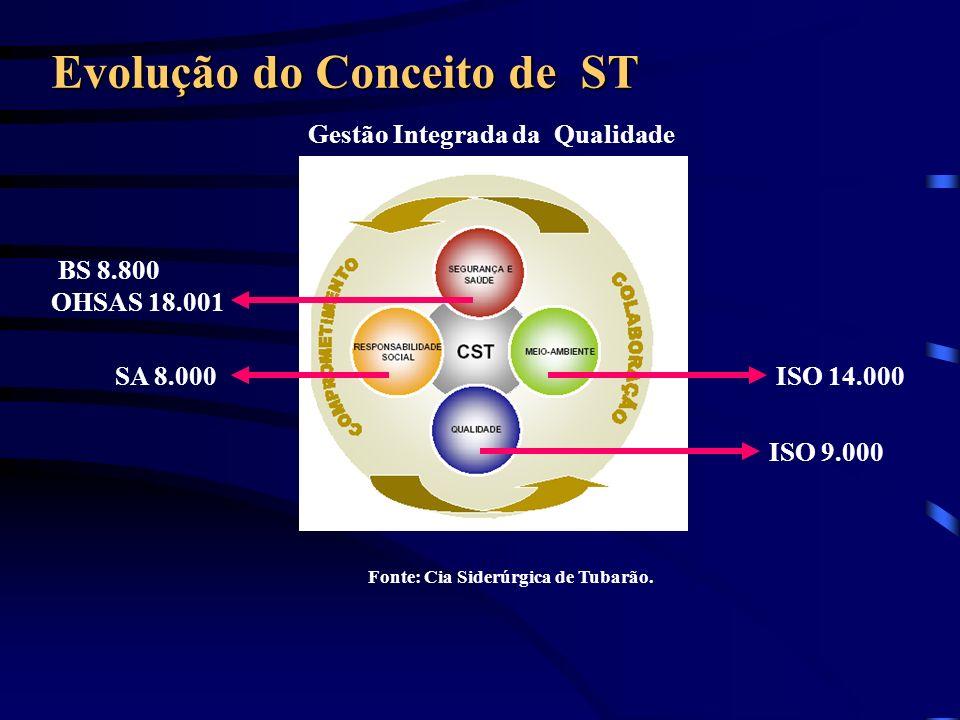 Evolução do Conceito de ST Fonte: Cia Siderúrgica de Tubarão. Gestão Integrada da Qualidade ISO 9.000 ISO 14.000 SA 8.000 BS 8.800 OHSAS 18.001