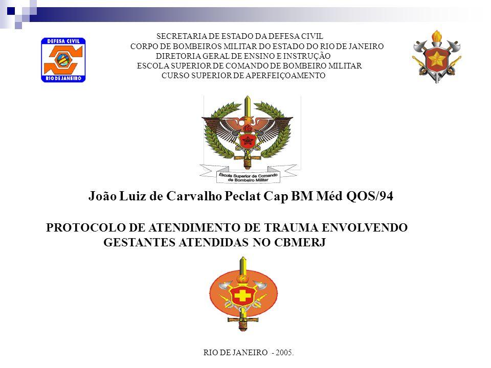SECRETARIA DE ESTADO DA DEFESA CIVIL CORPO DE BOMBEIROS MILITAR DO ESTADO DO RIO DE JANEIRO DIRETORIA GERAL DE ENSINO E INSTRUÇÃO ESCOLA SUPERIOR DE C