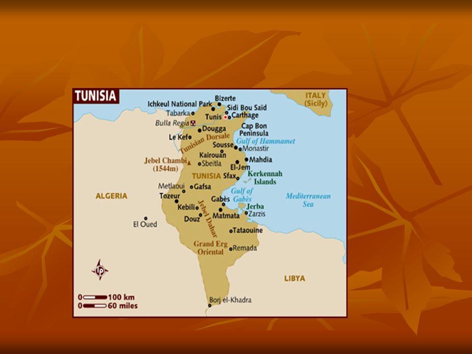 Sudão Violência e crise humanitária em Darfur Violência e crise humanitária em Darfur - oeste do Sudão – grande crise humanitária que causa 300 mil mortes e 2,6 milhões de refugiados - oeste do Sudão – grande crise humanitária que causa 300 mil mortes e 2,6 milhões de refugiados - o embate tem origem na disputa por terras, água e poder em Darfur e envolve uma minoria nômade de criadores de animais (árabes sudaneses) e uma maioria de agricultores de tribos negras, - o embate tem origem na disputa por terras, água e poder em Darfur e envolve uma minoria nômade de criadores de animais (árabes sudaneses) e uma maioria de agricultores de tribos negras, Em 2003, grupos armados de tribos negras iniciam um movimento separatista, acusando o governo central de negligenciar Darfur e de oprimir a maioria negra Em 2003, grupos armados de tribos negras iniciam um movimento separatista, acusando o governo central de negligenciar Darfur e de oprimir a maioria negra - O governo sudanês reage com violência à ação dos separatistas e se apoia na milícia dita árabe Janjaweed.