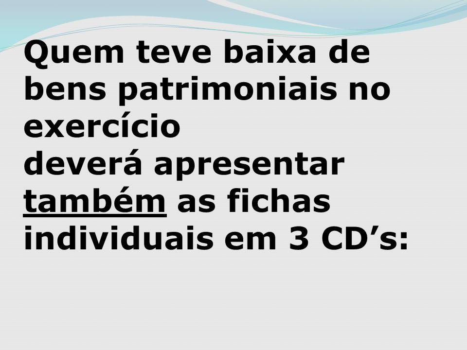 Quem teve baixa de bens patrimoniais no exercício deverá apresentar também as fichas individuais em 3 CDs:
