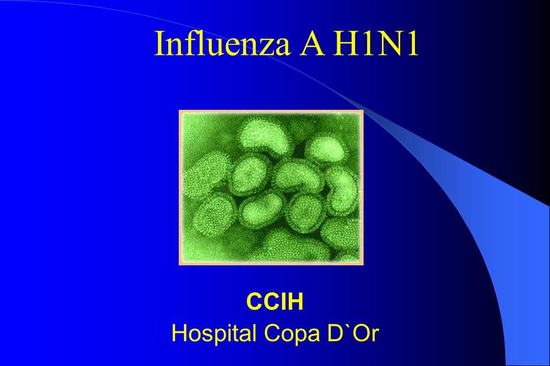 Influenza A H1N1 CCIH Hospital Copa D`Or