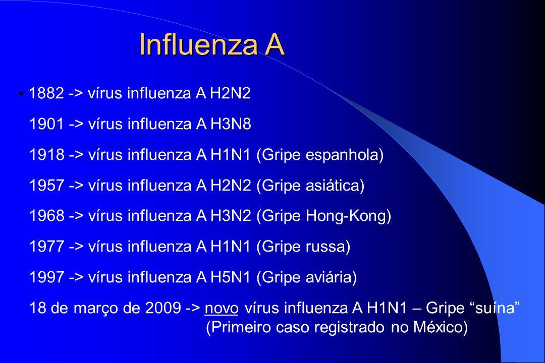Influenza A 1882 -> vírus influenza A H2N2 1901 -> vírus influenza A H3N8 1918 -> vírus influenza A H1N1 (Gripe espanhola) 1957 -> vírus influenza A H