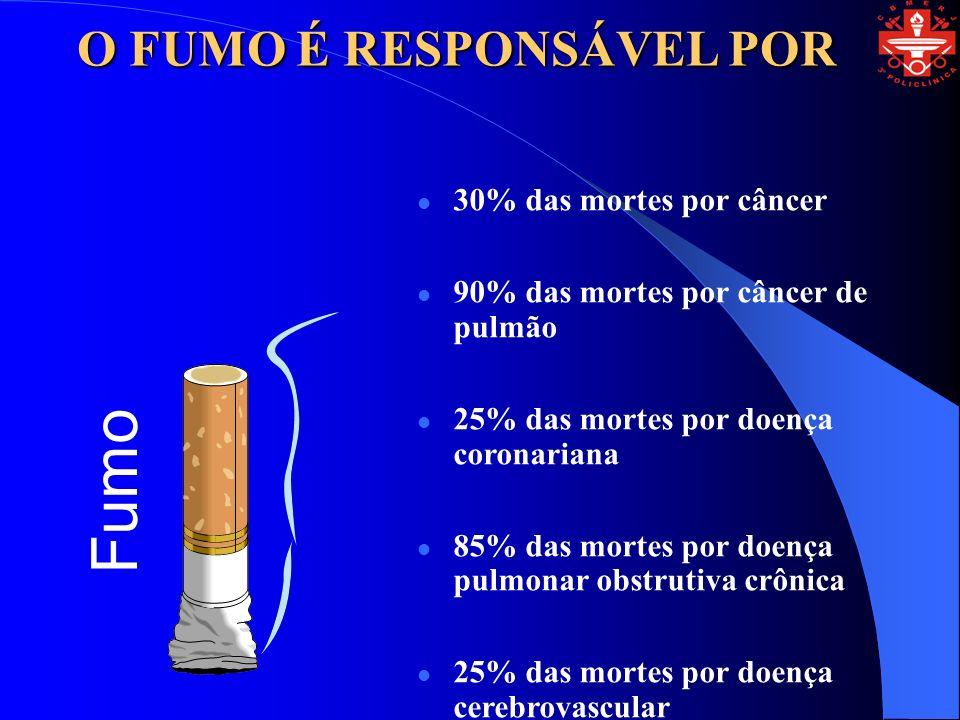 30% das mortes por câncer 90% das mortes por câncer de pulmão 25% das mortes por doença coronariana 85% das mortes por doença pulmonar obstrutiva crônica 25% das mortes por doença cerebrovascular Fumo O FUMO É RESPONSÁVEL POR