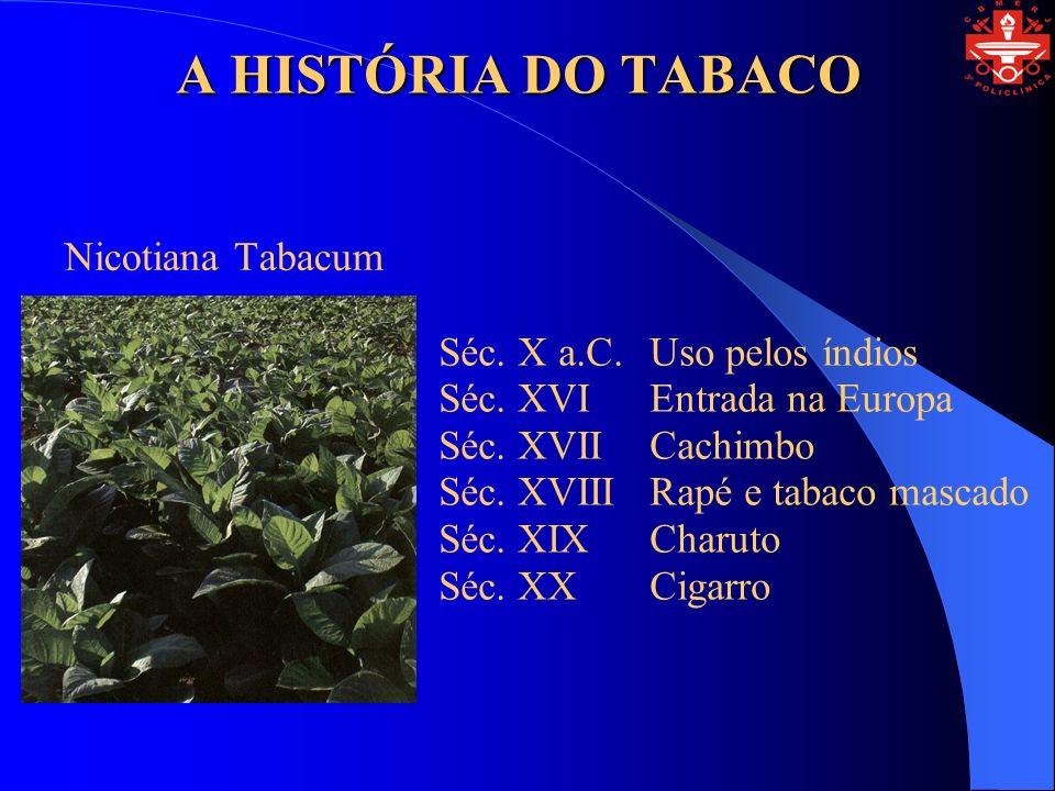 A HISTÓRIA DO TABACO Nicotiana Tabacum Séc. X a.C.Uso pelos índios Séc. XVIEntrada na Europa Séc. XVIICachimbo Séc. XVIIIRapé e tabaco mascado Séc. XI