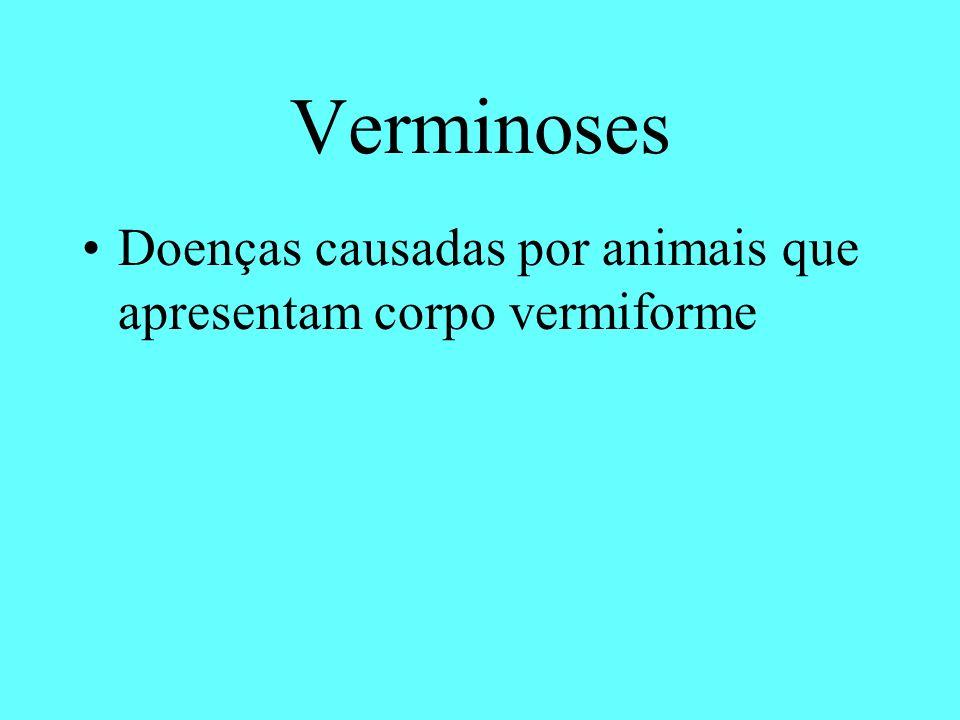 Doenças causadas por animais que apresentam corpo vermiforme