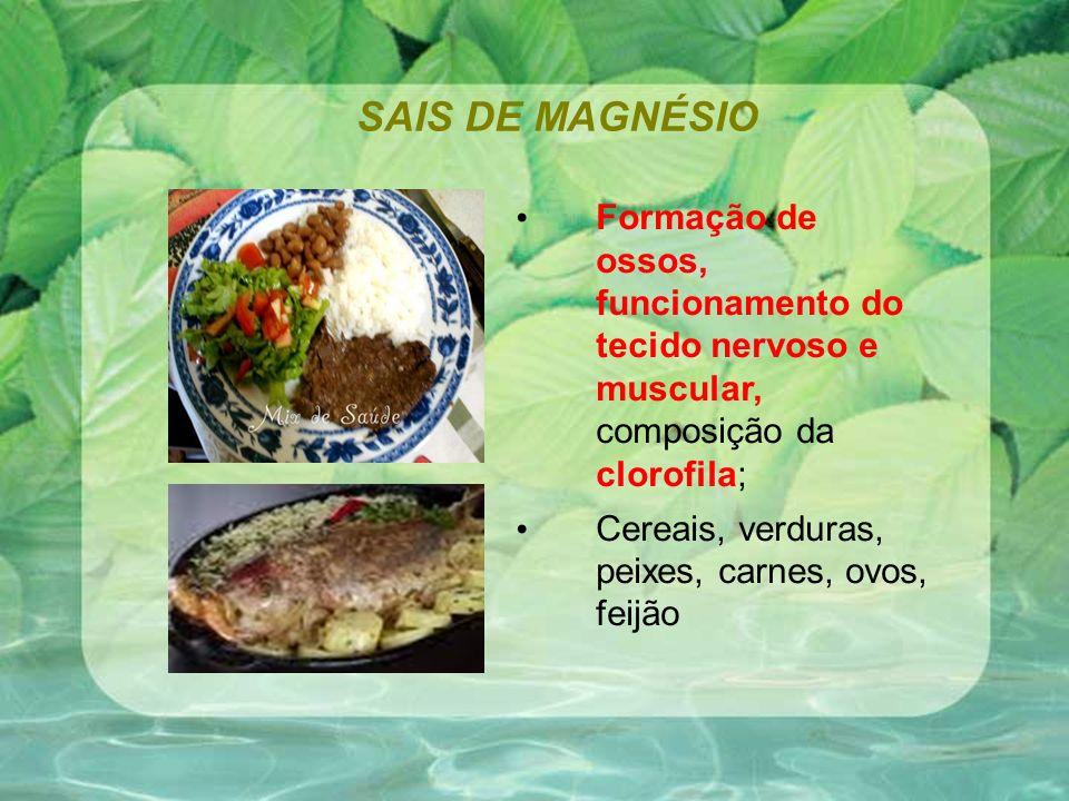 SAIS DE MAGNÉSIO Formação de ossos, funcionamento do tecido nervoso e muscular, composição da clorofila; Cereais, verduras, peixes, carnes, ovos, feijão