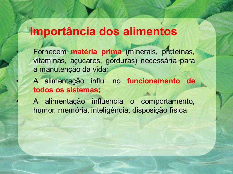 Importância dos alimentos Fornecem matéria prima (minerais, proteínas, vitaminas, açúcares, gorduras) necessária para a manutenção da vida; A alimentação influi no funcionamento de todos os sistemas; A alimentação influencia o comportamento, humor, memória, inteligência, disposição física