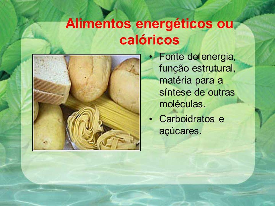 Alimentos energéticos ou calóricos Fonte de energia, função estrutural, matéria para a síntese de outras moléculas. Carboidratos e açúcares.