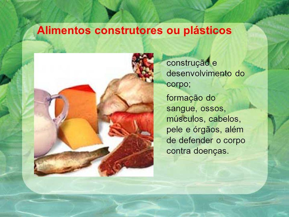 Alimentos construtores ou plásticos construção e desenvolvimento do corpo; formação do sangue, ossos, músculos, cabelos, pele e órgãos, além de defend