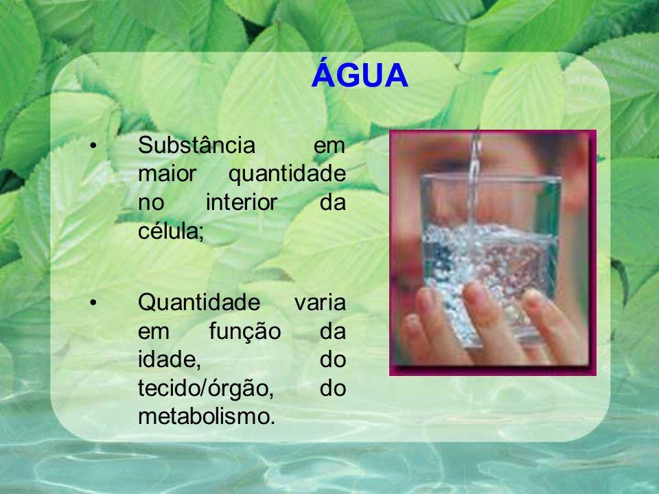 ÁGUA Substância em maior quantidade no interior da célula; Quantidade varia em função da idade, do tecido/órgão, do metabolismo.