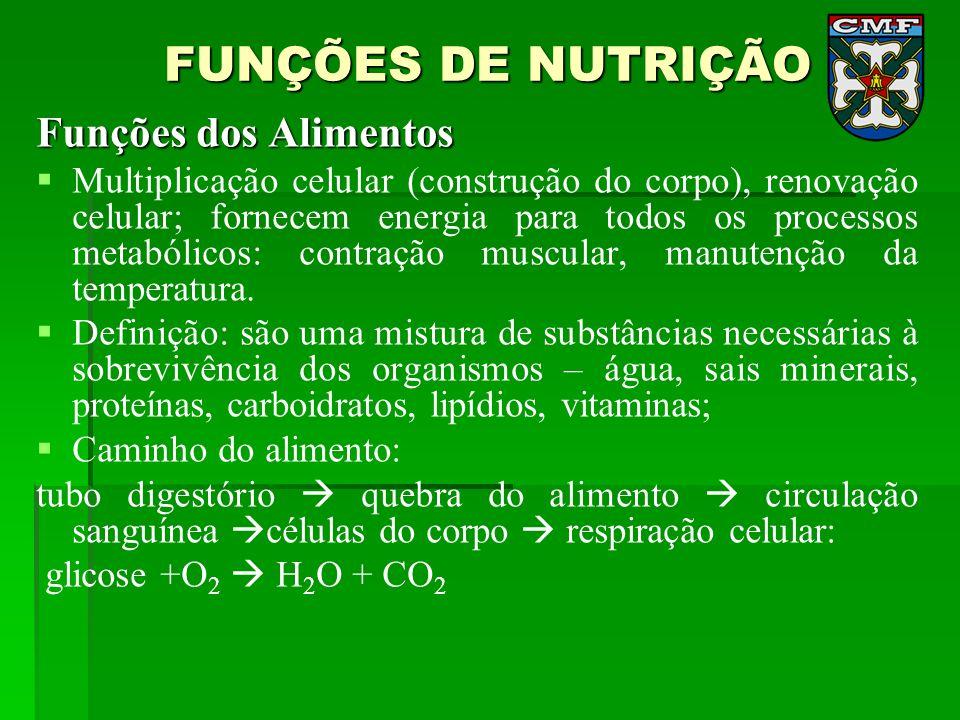 FUNÇÕES DE NUTRIÇÃO Funções dos Alimentos Multiplicação celular (construção do corpo), renovação celular; fornecem energia para todos os processos met