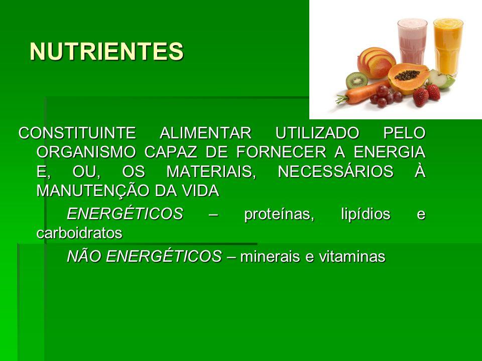 NUTRIENTES CONSTITUINTE ALIMENTAR UTILIZADO PELO ORGANISMO CAPAZ DE FORNECER A ENERGIA E, OU, OS MATERIAIS, NECESSÁRIOS À MANUTENÇÃO DA VIDA ENERGÉTIC