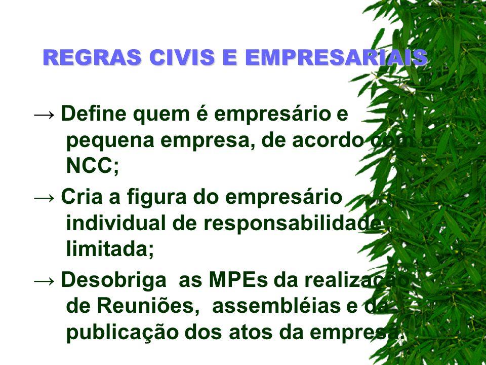 REGRAS CIVIS E EMPRESARIAIS Define quem é empresário e pequena empresa, de acordo com o NCC; Cria a figura do empresário individual de responsabilidad