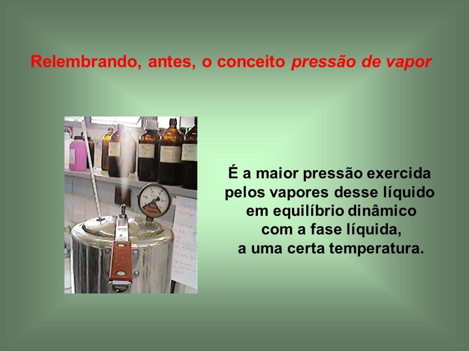 Relembrando, antes, o conceito pressão de vapor É a maior pressão exercida pelos vapores desse líquido em equilíbrio dinâmico com a fase líquida, a um
