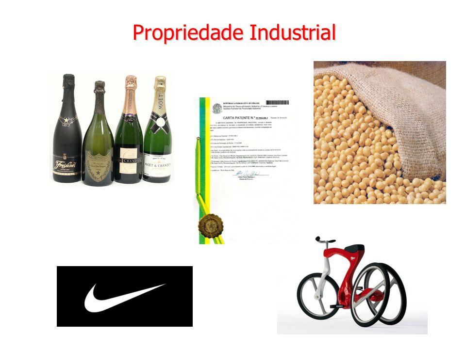 28 Propriedade Industrial