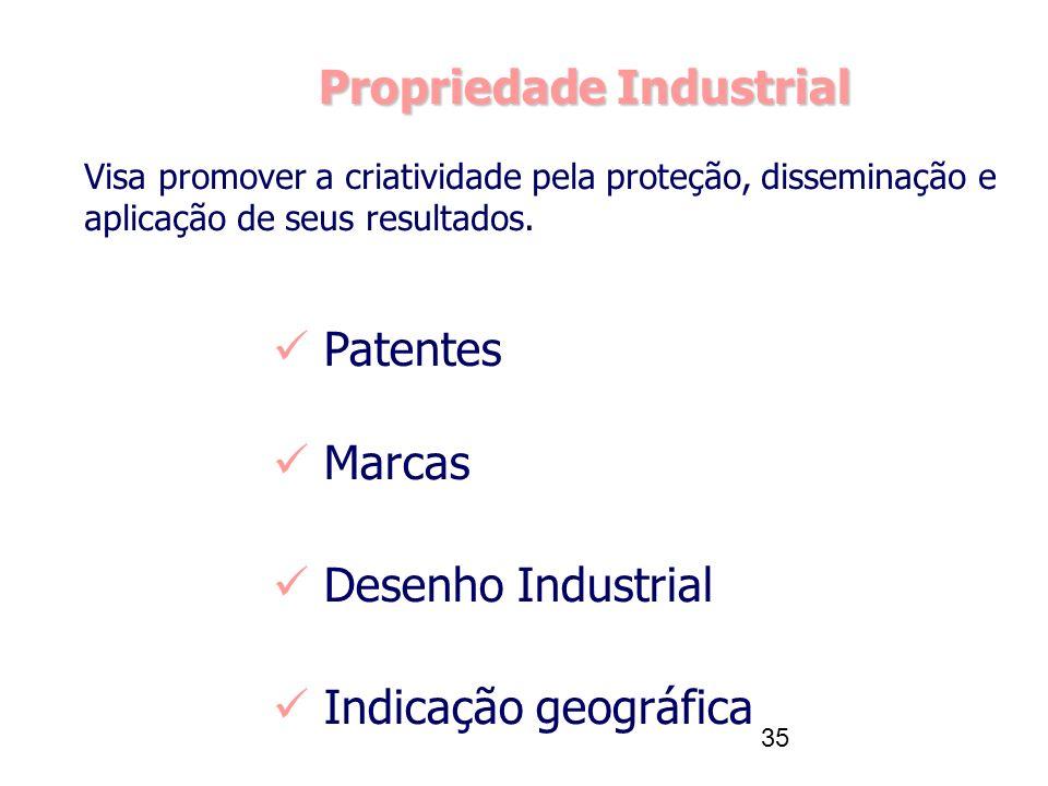 35 Propriedade Industrial Patentes Marcas Desenho Industrial Indicação geográfica Visa promover a criatividade pela proteção, disseminação e aplicação de seus resultados.