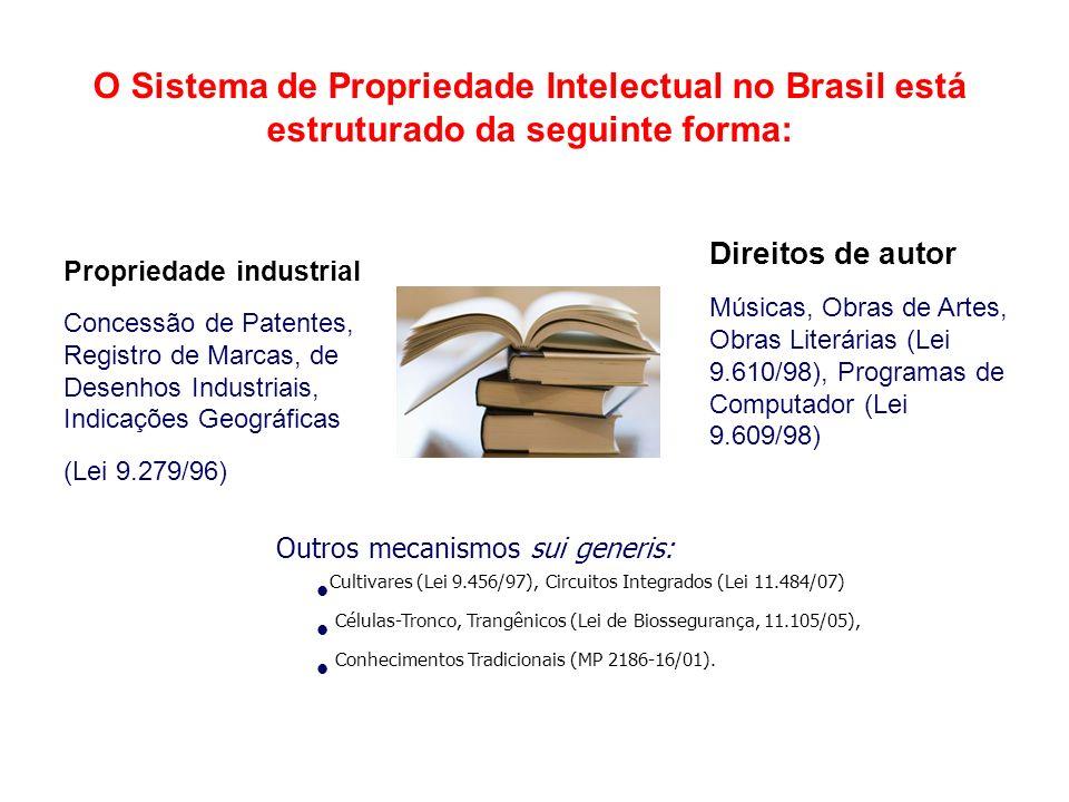 O Sistema de Propriedade Intelectual no Brasil está estruturado da seguinte forma: Propriedade industrial Concessão de Patentes, Registro de Marcas, de Desenhos Industriais, Indicações Geográficas (Lei 9.279/96) Direitos de autor Músicas, Obras de Artes, Obras Literárias (Lei 9.610/98), Programas de Computador (Lei 9.609/98) Outros mecanismos sui generis: Cultivares (Lei 9.456/97), Circuitos Integrados (Lei 11.484/07) Células-Tronco, Trangênicos (Lei de Biossegurança, 11.105/05), Conhecimentos Tradicionais (MP 2186-16/01).