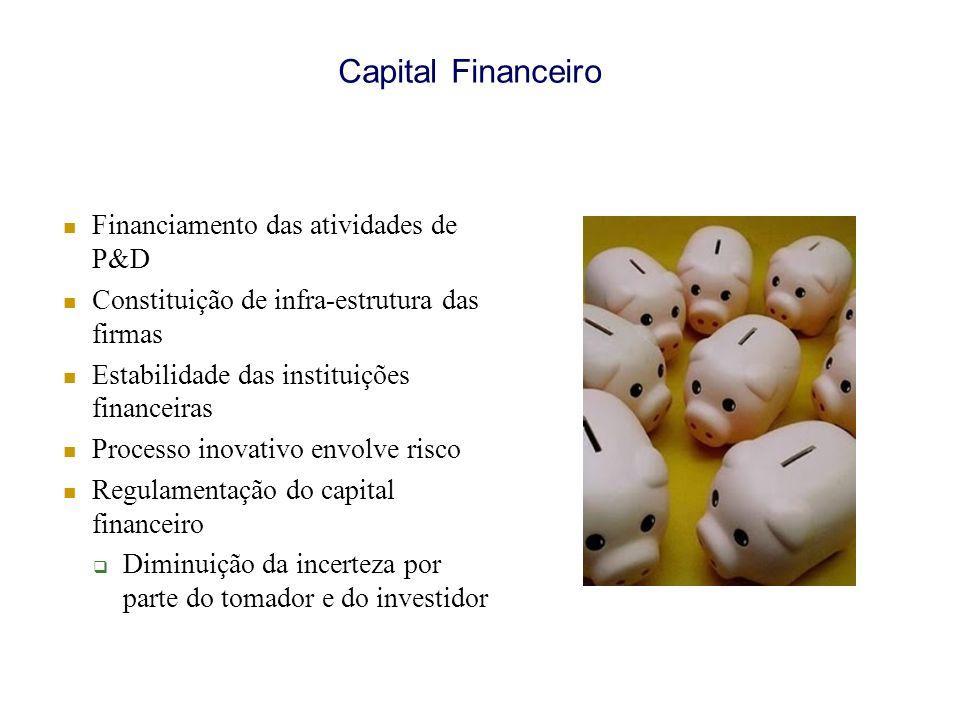 Capital Financeiro Financiamento das atividades de P&D Constituição de infra-estrutura das firmas Estabilidade das instituições financeiras Processo inovativo envolve risco Regulamentação do capital financeiro Diminuição da incerteza por parte do tomador e do investidor