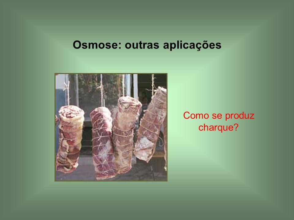 Osmose: outras aplicações Como se produz charque?