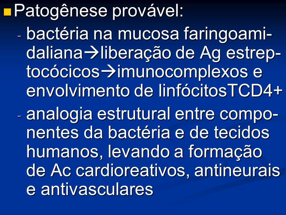 Patogênese provável: Patogênese provável: - bactéria na mucosa faringoami- daliana liberação de Ag estrep- tocócicos imunocomplexos e envolvimento de