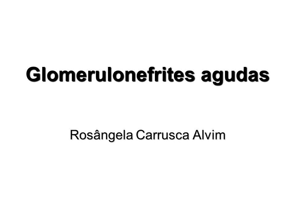 Glomerulonefrites agudas Rosângela Carrusca Alvim