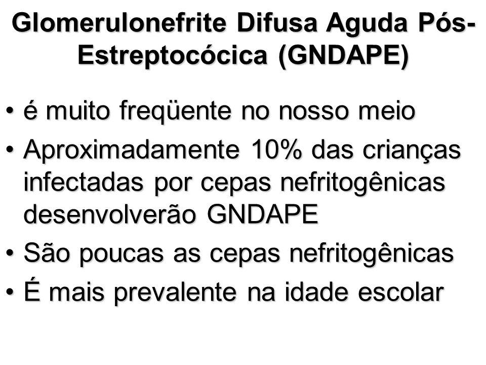 Glomerulonefrite Difusa Aguda Pós- Estreptocócica (GNDAPE) é muito freqüente no nosso meioé muito freqüente no nosso meio Aproximadamente 10% das cria