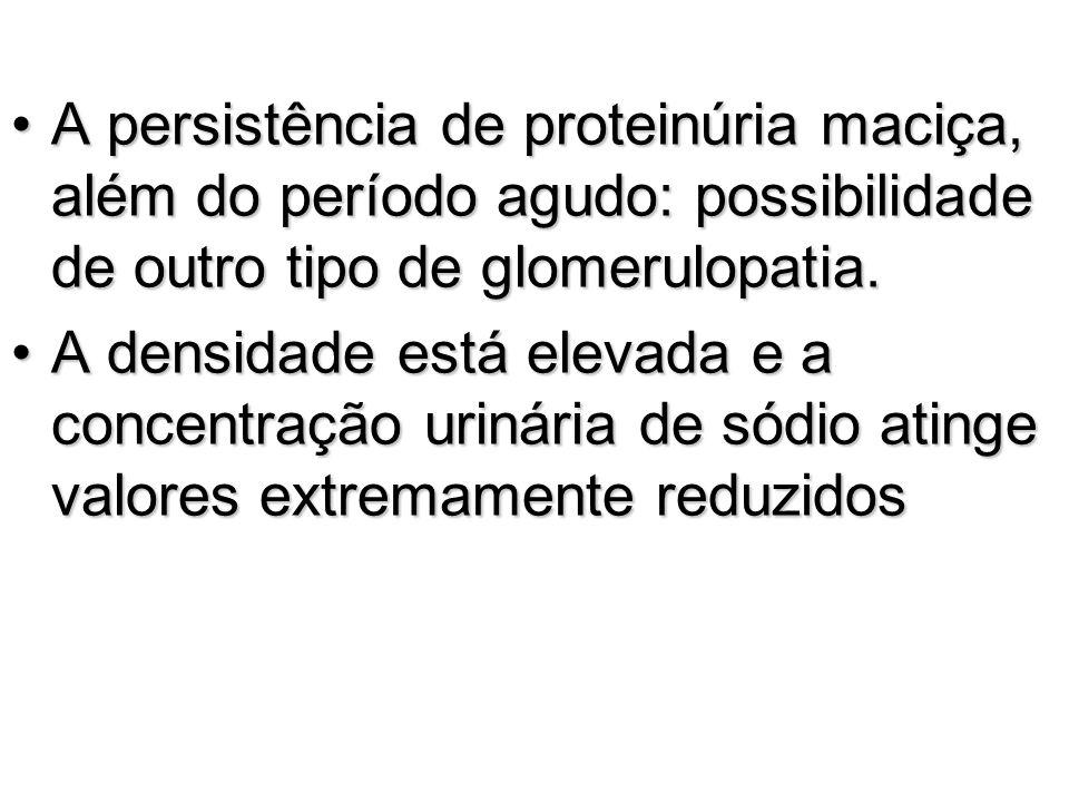 A persistência de proteinúria maciça, além do período agudo: possibilidade de outro tipo de glomerulopatia.A persistência de proteinúria maciça, além