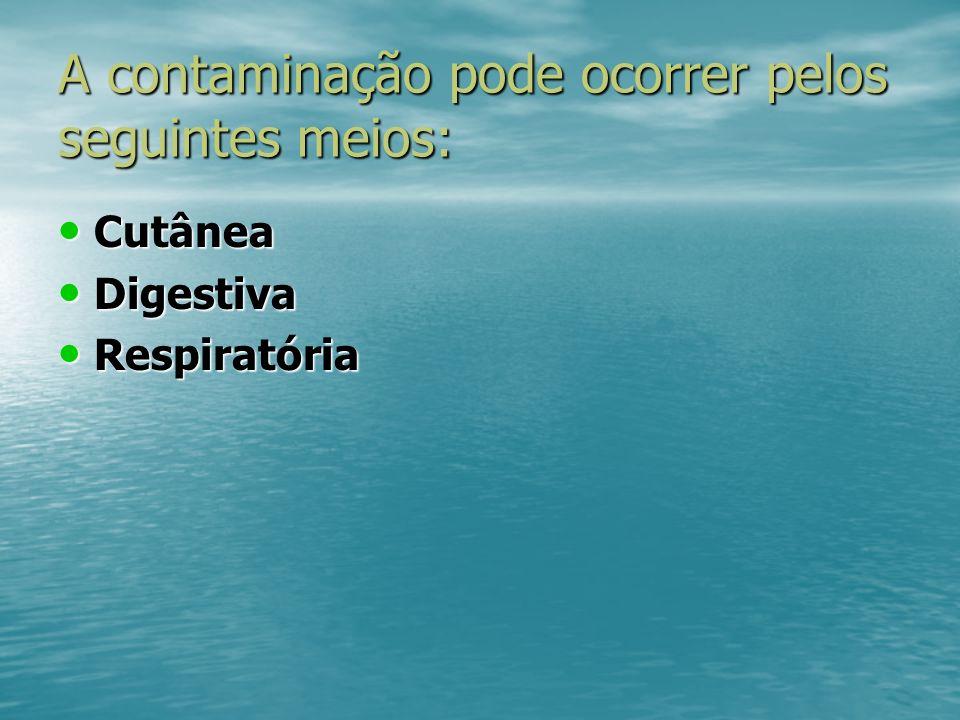 A contaminação pode ocorrer pelos seguintes meios: Cutânea Cutânea Digestiva Digestiva Respiratória Respiratória