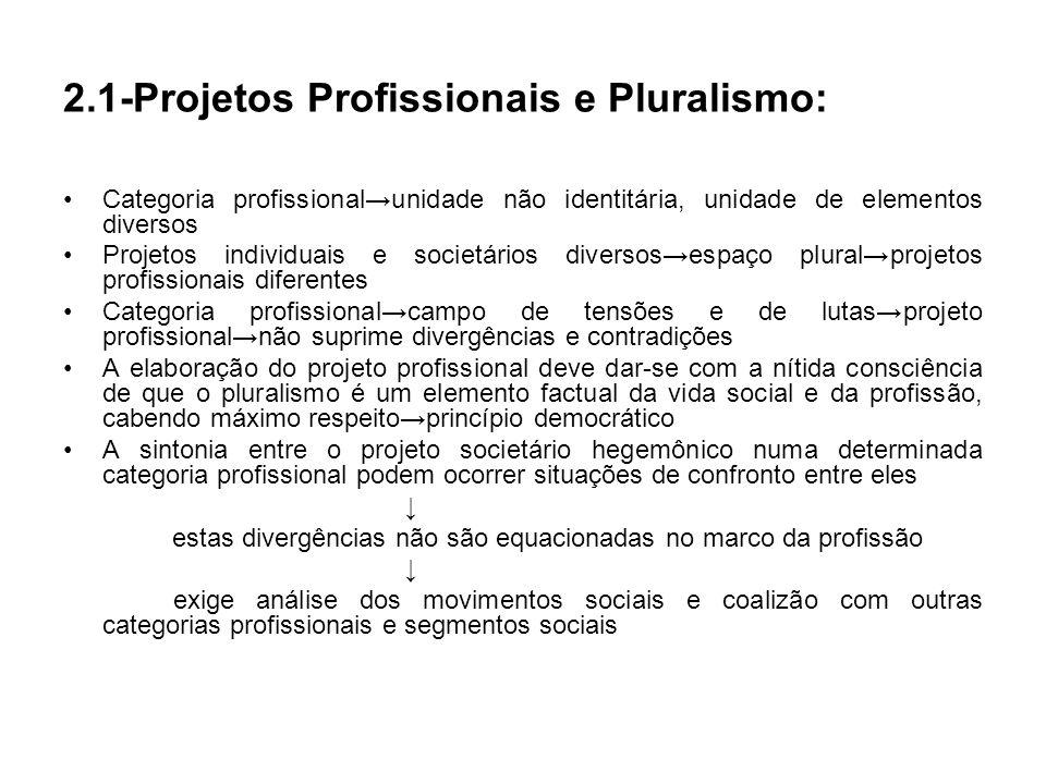 Categoria profissionalunidade não identitária, unidade de elementos diversos Projetos individuais e societários diversosespaço pluralprojetos profissi