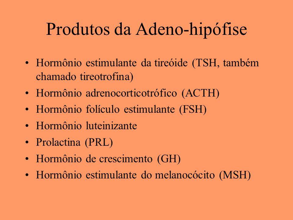Produtos da Adeno-hipófise Hormônio estimulante da tireóide (TSH, também chamado tireotrofina) Hormônio adrenocorticotrófico (ACTH) Hormônio folículo