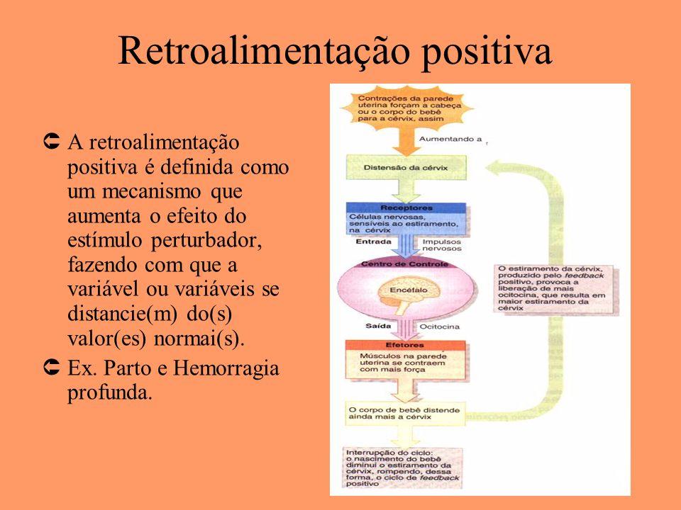 Retroalimentação positiva ÛA retroalimentação positiva é definida como um mecanismo que aumenta o efeito do estímulo perturbador, fazendo com que a va