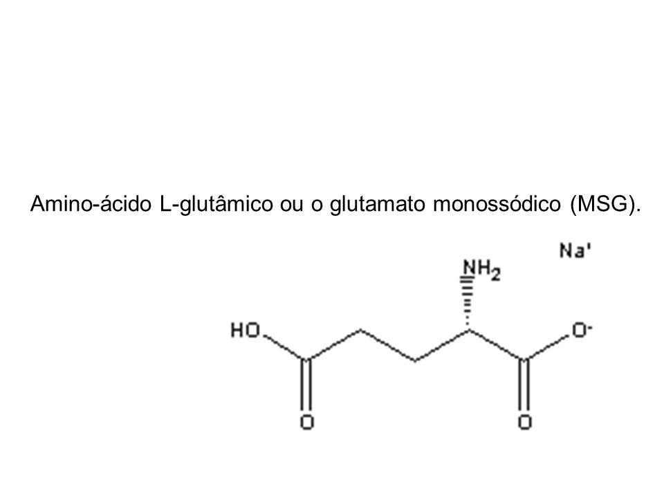Amino-ácido L-glutâmico ou o glutamato monossódico (MSG).