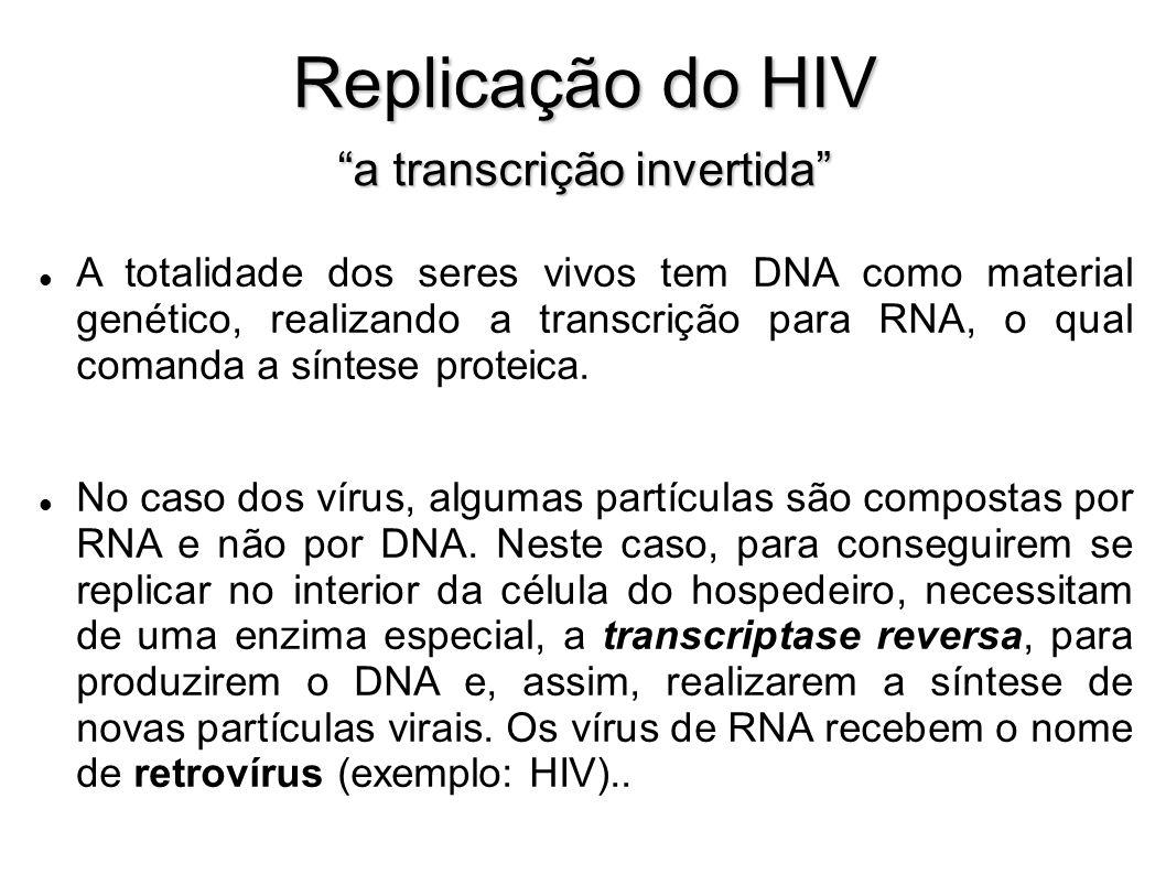 Replicação do HIV a transcrição invertida A totalidade dos seres vivos tem DNA como material genético, realizando a transcrição para RNA, o qual coman