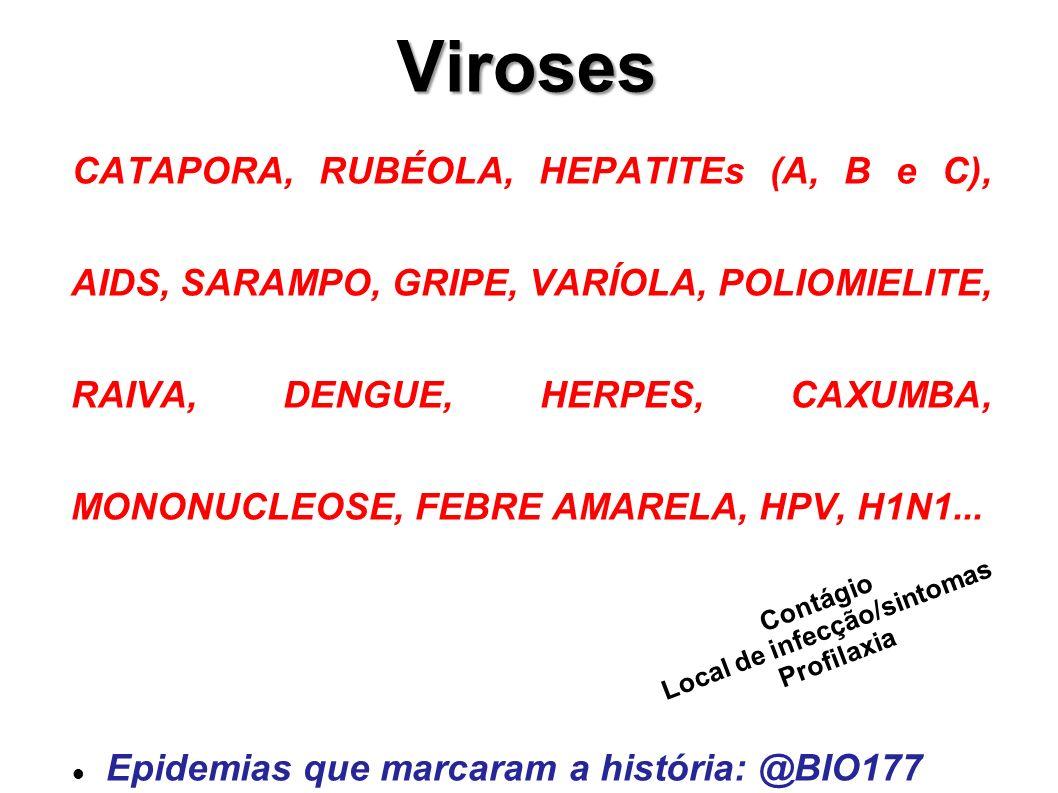 Viroses CATAPORA, RUBÉOLA, HEPATITEs (A, B e C), AIDS, SARAMPO, GRIPE, VARÍOLA, POLIOMIELITE, RAIVA, DENGUE, HERPES, CAXUMBA, MONONUCLEOSE, FEBRE AMAR