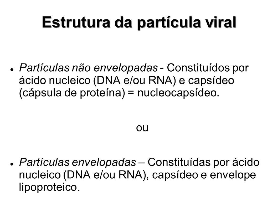 Estrutura da partícula viral Partículas não envelopadas - Constituídos por ácido nucleico (DNA e/ou RNA) e capsídeo (cápsula de proteína) = nucleocaps